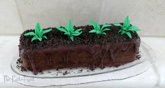 gambar kue ulang tahun tanaman