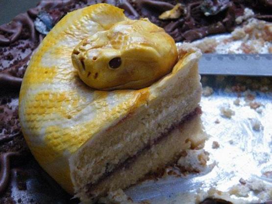 gambar kue ulang tahun ular sapi